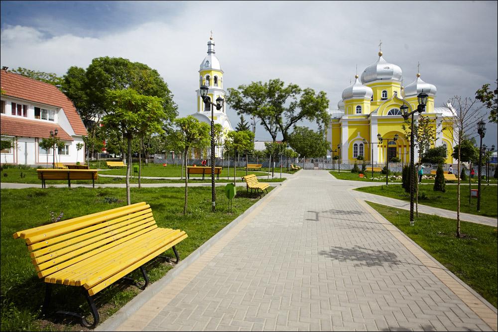 Высаженные в центральном парке Комрата растения, не только облагородят городской парк, но и создадут тень для отдыхающих