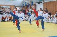 В Комрате состоялся отрытый турнир на «Кубок Комрата» по тхэквондо среди детей и кадетов