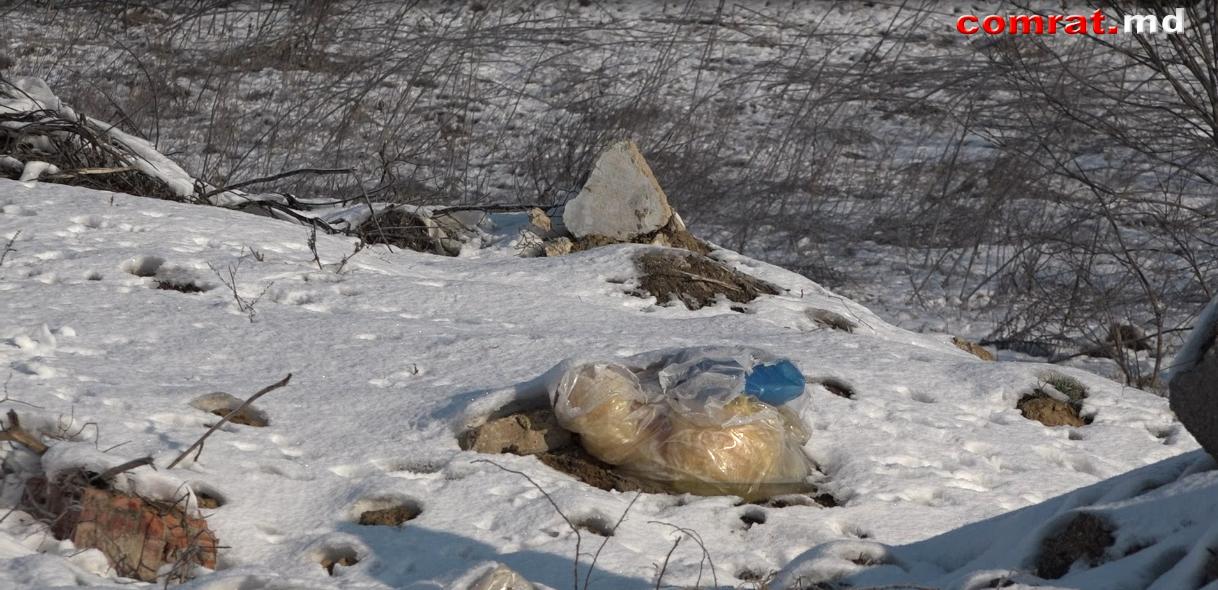 В Комрате продолжают бороться со стихийными мусоросвалками