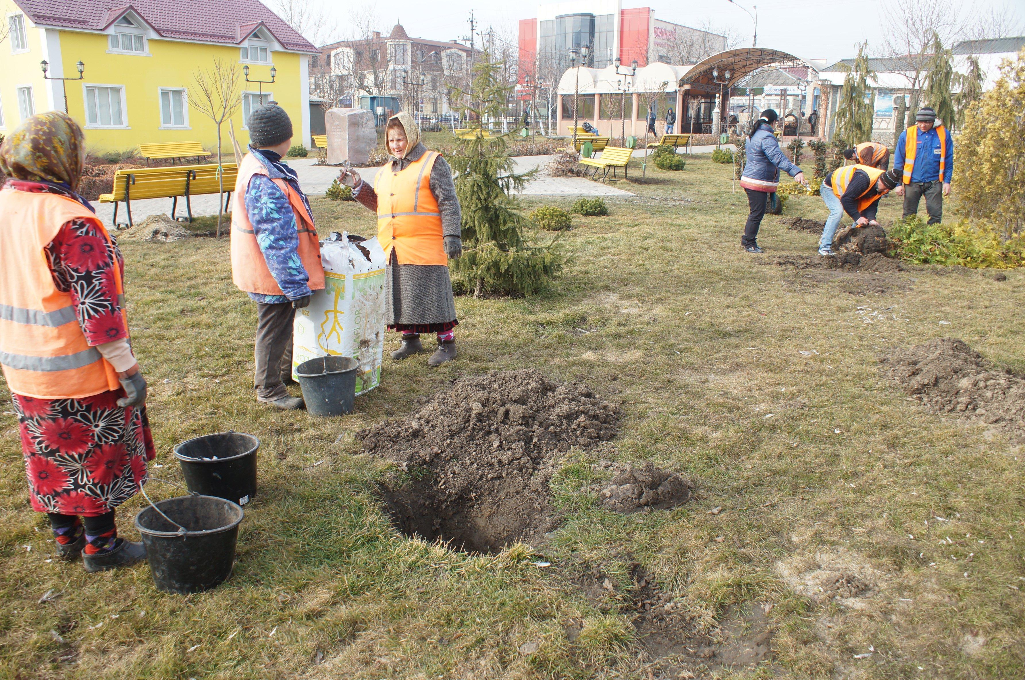 Требуются рабочие в бригаду озеленителей МП ЖКХ Комрата